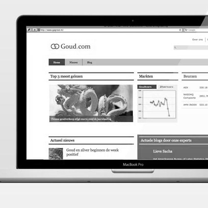 Portfolio-FI-Goud.com---Header-BW